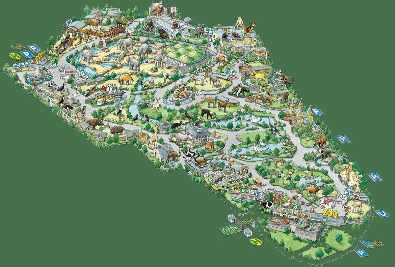 Kölner Zoo Bezoek